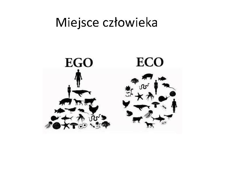 Krakow_2015.04.11_Page_08